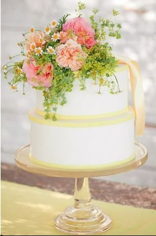 Tmx 1366834198727 Cake2 Bradenton, Florida wedding florist