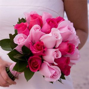Tmx 1379524871333 Lightpinkdarkpinkroyalrose Bradenton, Florida wedding florist