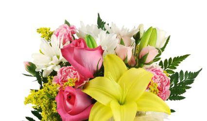 GK Blumen Floral