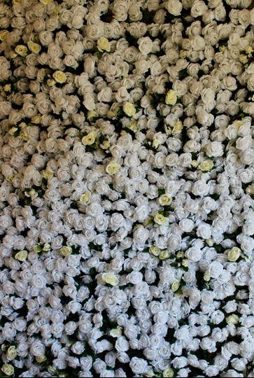 White with Cream Roses