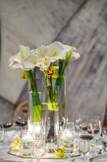 For the love of calla lillies