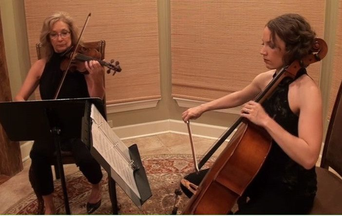 Vermilion strings' string duo