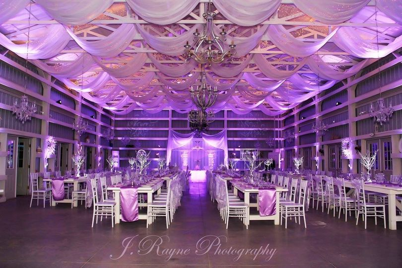 michael anthony prooductions purple up lighting an