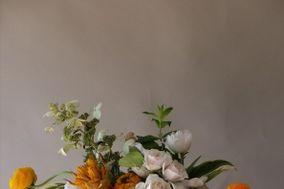 Helios Floral