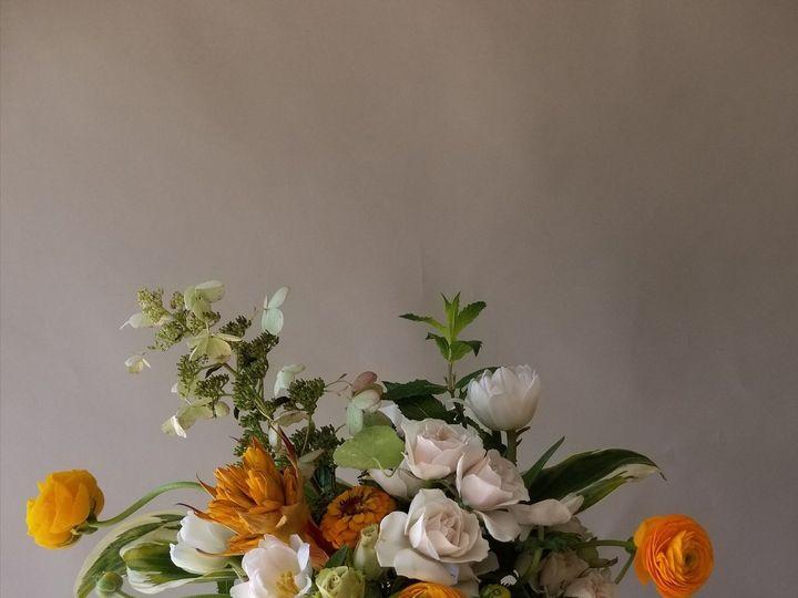 Tmx 1505105145 5f86588d327fb366 20170910 192446 Salem, MA wedding florist