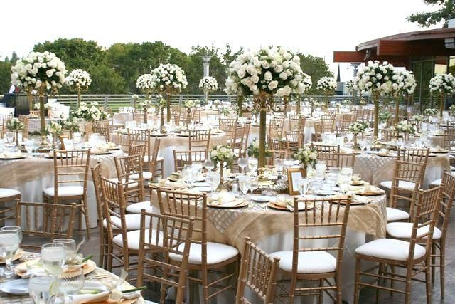 Chiavari Chairs huge inventory and industry low prices.