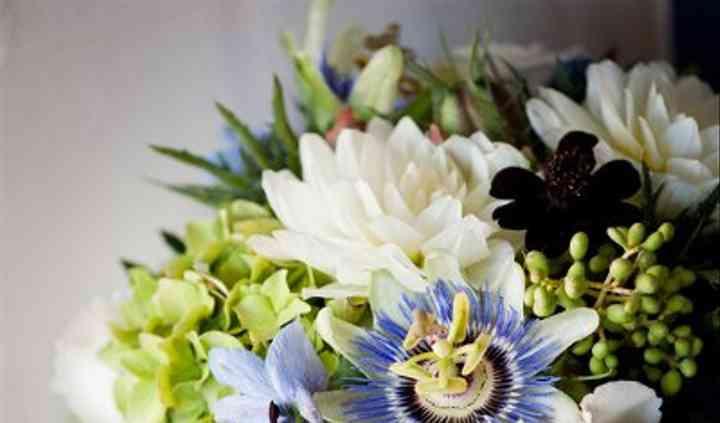 Katharina Stuart Floral Art and Design