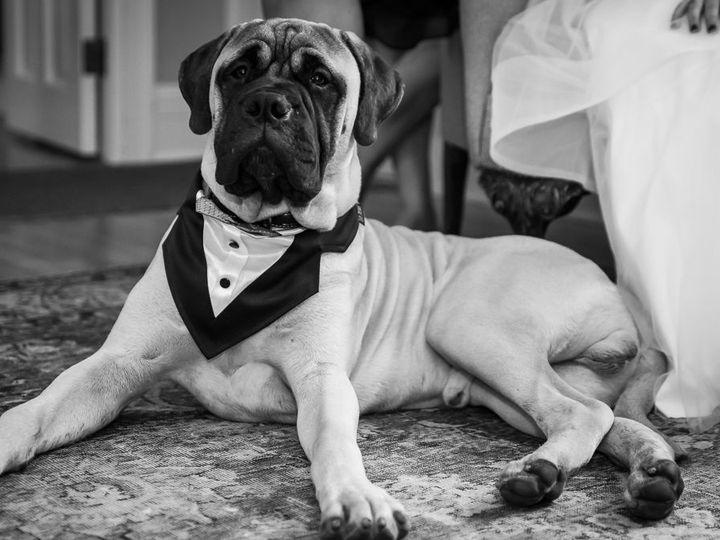 Tmx 1526057588 B44d9e518b85de57 1526057587 Ad0d6dcc0a79d038 1526057587601 5 DSC 6017 Morrisville, Vermont wedding photography