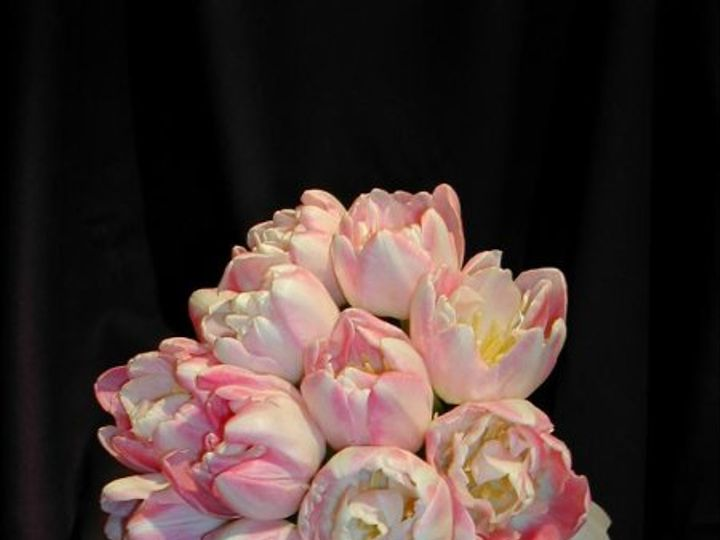 Tmx 1291821619033 2 Fort Worth wedding florist