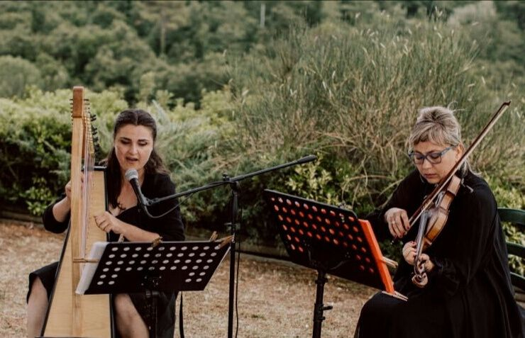 Harp and violin duo