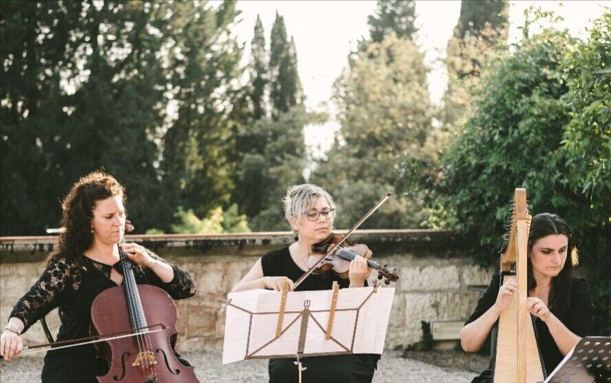 A classical trio