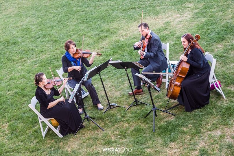 Ocean String Quartet