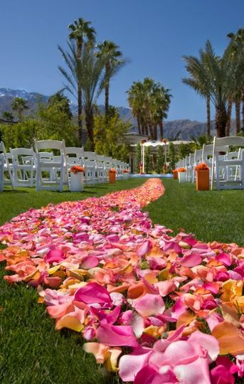 The wexler garden provides an extraordinary wedding experience