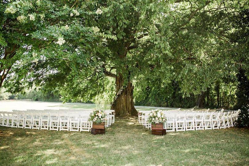 Hackberry tree ceremony