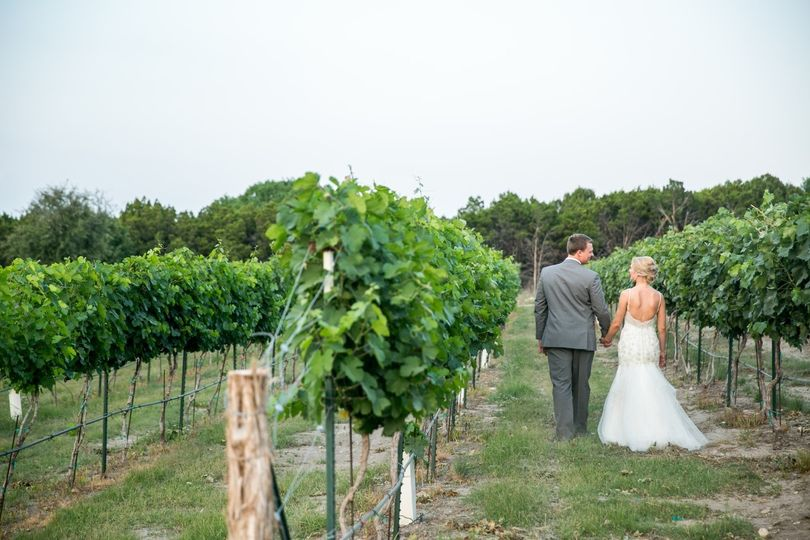 Romantic stroll thru vineyards