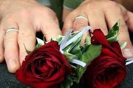 Tmx Gay Wedding 51 4181 157555841993474 Springfield, VA wedding officiant