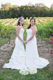 Tmx Gaycouple7 51 4181 157555873379704 Springfield, VA wedding officiant