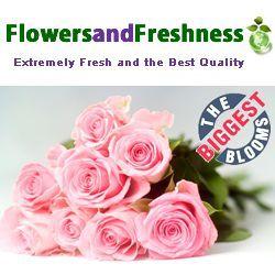FlowersandFreshness.com VIPBlooms