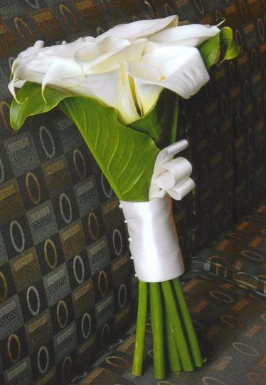 Sleek and Modern Calla Lily