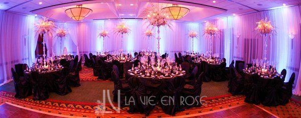 Tmx 1356135680399 Lavieenrosewhiteorchidcrystalcandelabracenterpiecepurplelightdrapeweddingmarriott Tampa wedding florist