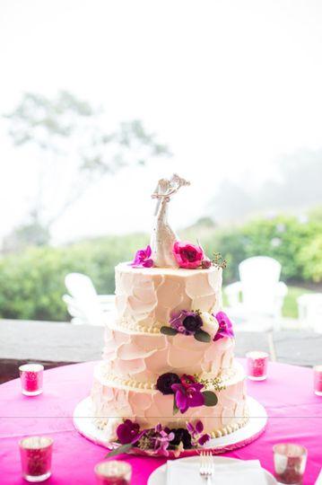 Cake Views