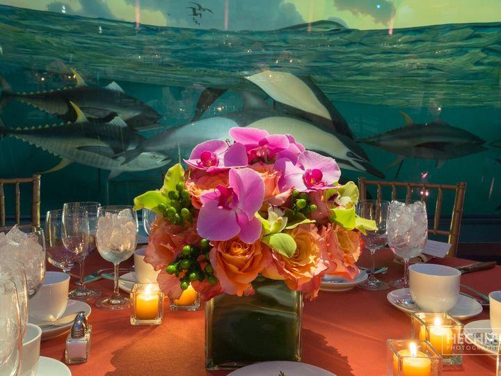Tmx Img 4309 51 1233381 158708442294136 New York, NY wedding planner