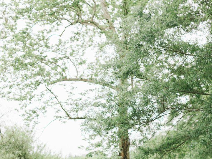 Tmx Amanda B 3 51 353381 1572311959 Haymarket, VA wedding florist