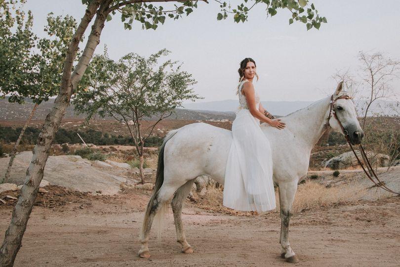 Bride on White Horse