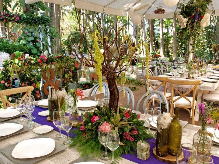 Tmx Arbolito 1 51 1038381 Mexico City, MX wedding planner