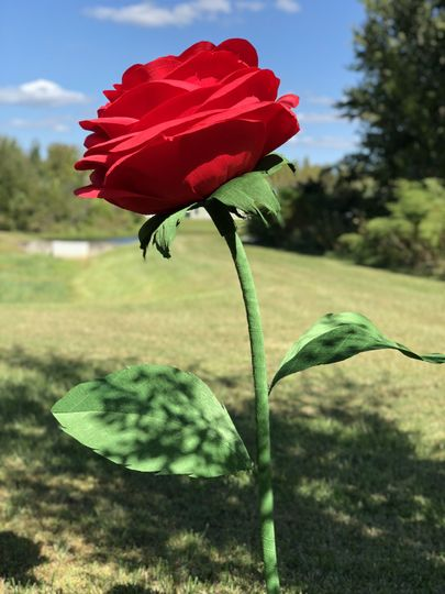 Giant paper rose