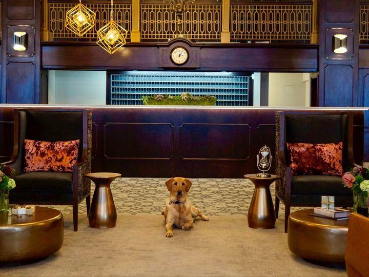 Tmx Puppy 51 1020481 1572357117 Green Bay, WI wedding venue