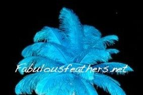Fabulous Feathers, Inc