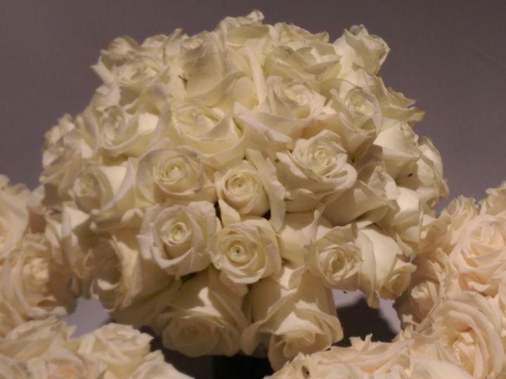 Tmx 1456184968274 2016 01 23 13.23.58 Colorado Springs, CO wedding florist