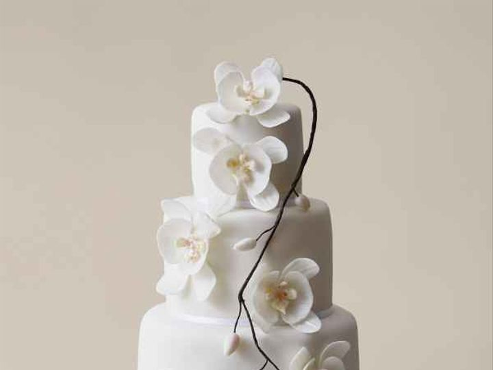 Tmx C08f4b51 Eba9 4d73 9191 B00c3390eea1 51 988481 158438242238761 San Diego, CA wedding cake
