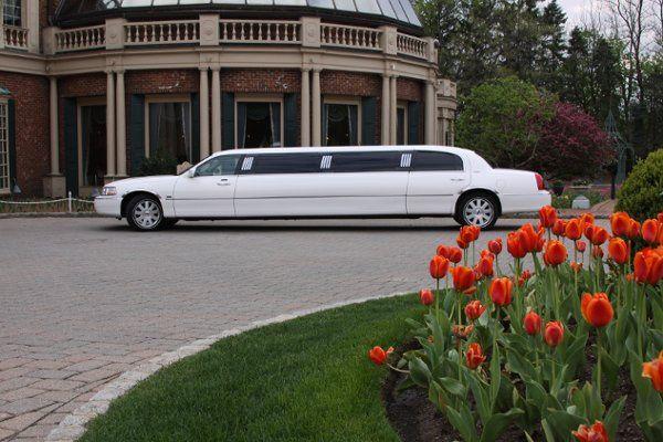 Tmx 1329876889567 WhiteStretchLimo Cranford wedding transportation