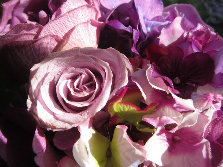 shades of purples 013