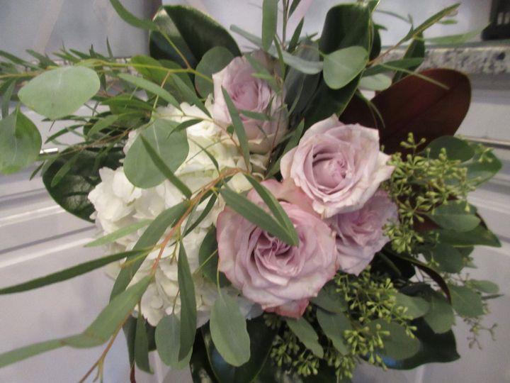 Roses seeded euc.