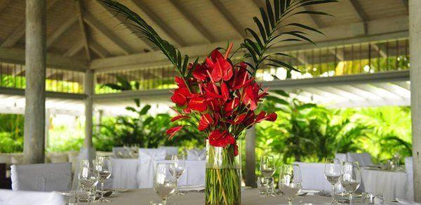 Tmx 1279295136479 Reception3 Brooklyn wedding planner