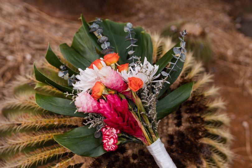 cactus botanical garden hawaii elopement sydney and ryan photography 37 51 1056581 1570663773