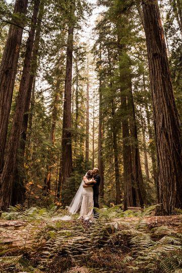 redwood forest elopement california elopement photographer 1 51 1056581 160168698276849