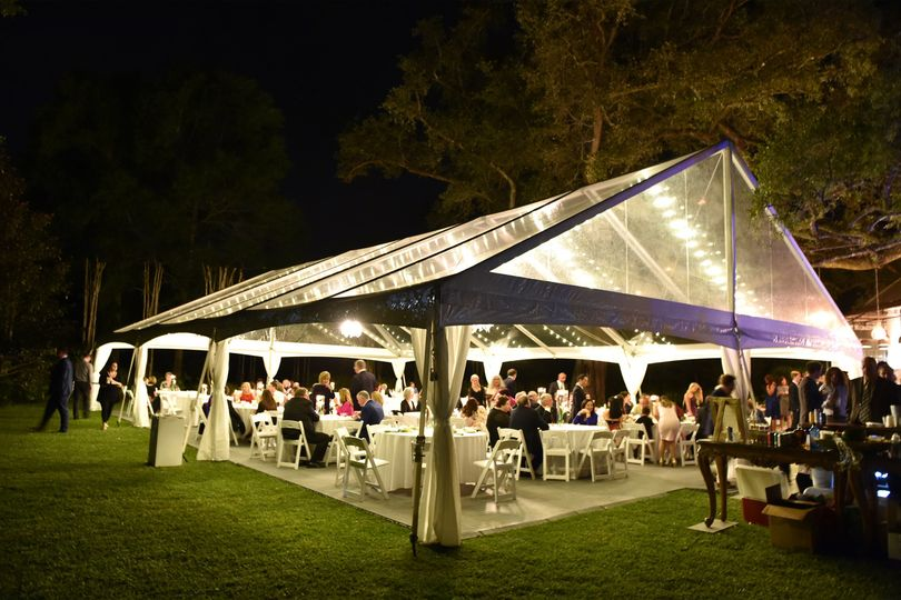 Clear Top Tent with Lighting