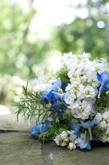 Blue white flowers