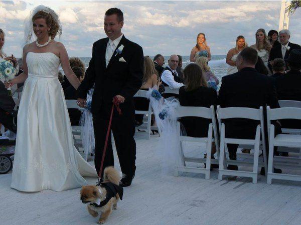 Tmx 1332430423438 Slide7 Venice wedding officiant