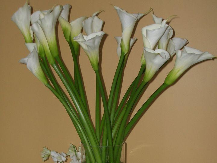 Tmx 1518030479 Ff0fd6edb80fbde3 1518030478 5dd03e75d0d1e44f 1518030476204 12 Nate And Sara Han Natick, Massachusetts wedding florist