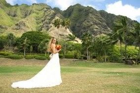Beautiful Kualoa Ranch Wedding
