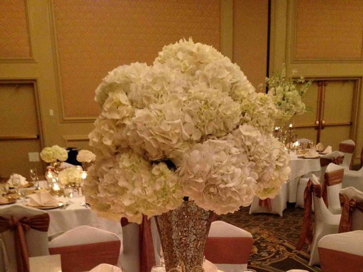 Tmx 1374613243154 Hydrangea Charlotte, NC wedding venue