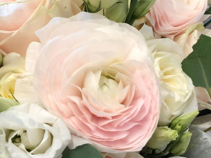 Tmx Img 5192 51 1893781 157428492083014 Ashland, MA wedding florist