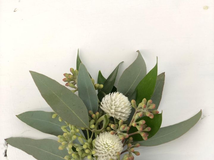 Tmx Img 5529 51 1893781 157428538572176 Ashland, MA wedding florist