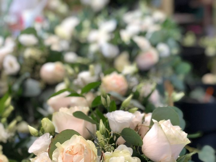 Tmx Img E5173 51 1893781 157428495587234 Ashland, MA wedding florist
