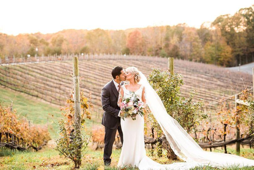 Fall Vineyard Views